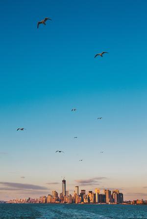 new-york-photography