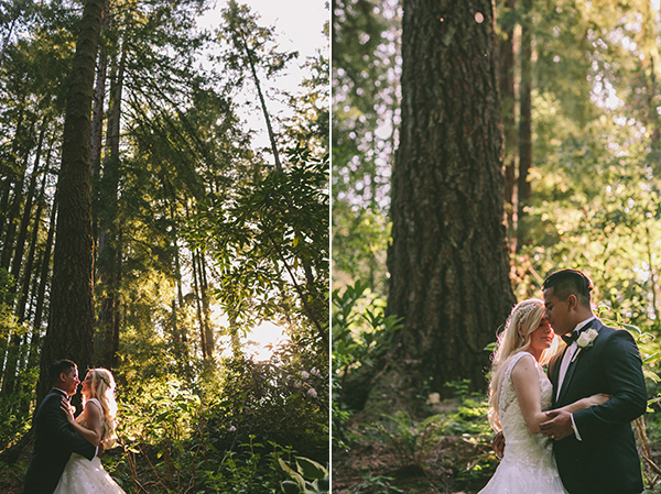 california-redwoods-wedding (5)