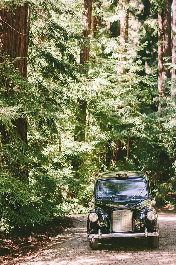 california-redwoods-wedding