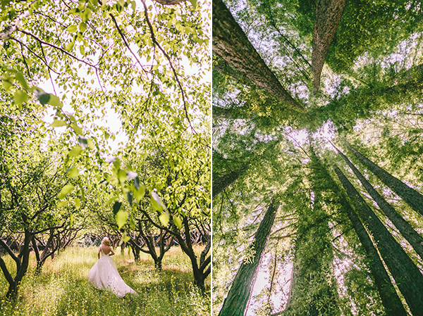 redwood-wedding