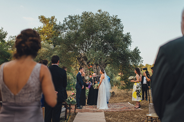 olive-grove-wedding (11)