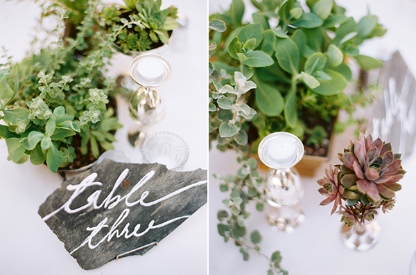 succulent-wedding-ideas