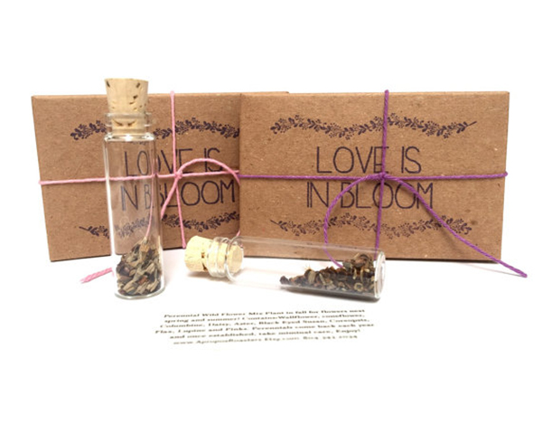 Rustic Seed Wedding Favors