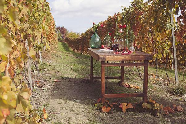 bohemian-vineyard-inspiration-5