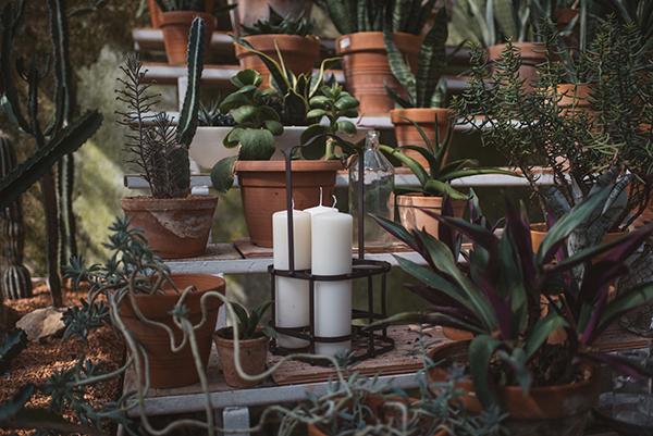 inspiration-photoshoot-beautiful-greenhouse-16
