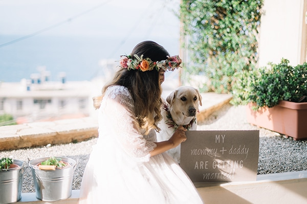 pets-weddings-how-include-them-2.