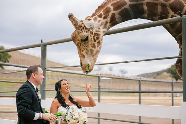masterchef-winner-wedding_07