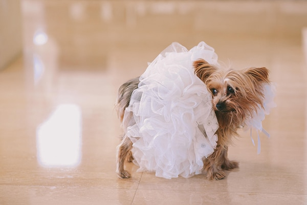 beautiful-chic-wedding-cyprus_08x