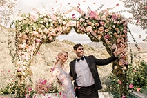 Stefanotis Weddings